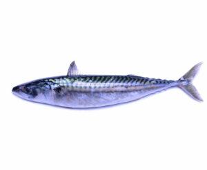 makreeell